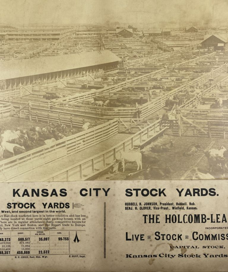 Kansas City Stock Yards [caption title]. Missouri, Cattle.
