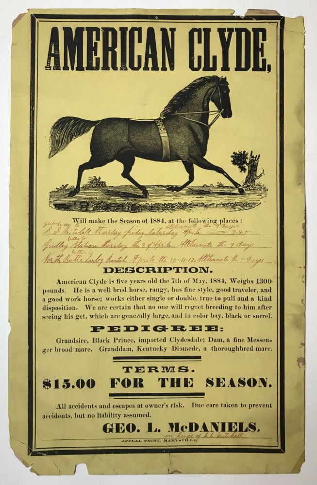 American Clyde, Will Make the Season of 1884, at the Following Places…[caption title]. California, Horses.