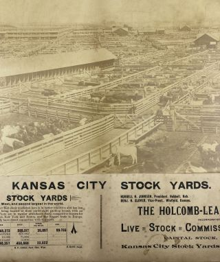 Kansas City Stock Yards [caption title]. Missouri, Cattle