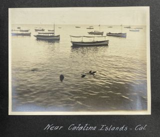 [Vernacular Photograph Album Documenting a Journey from Florida to California and then Colorado]