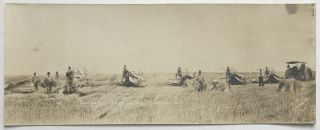 Chas. Gad. Harvesting. 1915. Flaxton, N.D. North Dakota