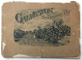 Souvenir of Galveston, Texas, the Oleander City. Texas