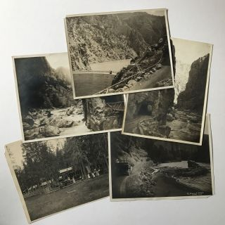 [Group of Five Large Photographs of Shoshone National Forest Yellowstone by F.J. Hiscock]